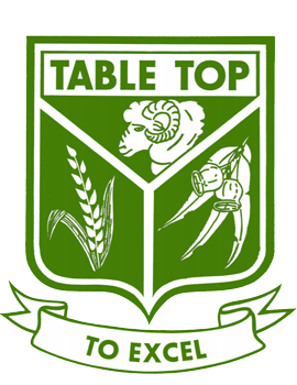 Table Top Public School logo